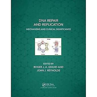Réplication et la réparation de l'ADN: mécanismes et signification clinique