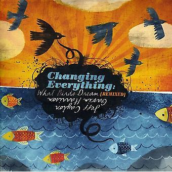 Jeff Caylor y Gavin Harrison - cambio de todo: Qué aves sueño [Remixed] [CD] USA importar