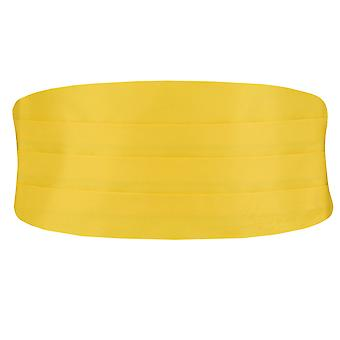 Dobell drenge gul Cummerbund justerbar talje smoking bryllup tilbehør