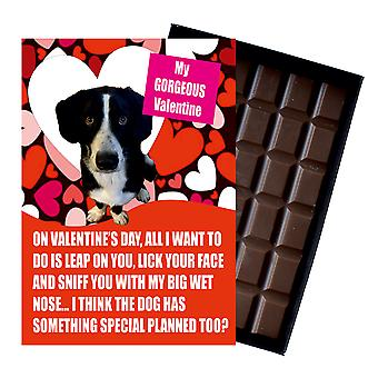 Border Collie Gift Valentines Day Presents For Dog Lovers Fun Boxed Chocolate