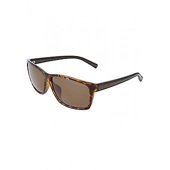 Polaroid - Accessories - Sunglasses - PLD2027FS_M31IG - Men - saddlebrown