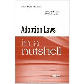 Adoption and Foster Care in a Nutshell by Sanford N. Katz - Daniel Ka