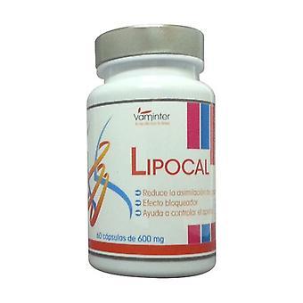 Lipocal 60 capsules