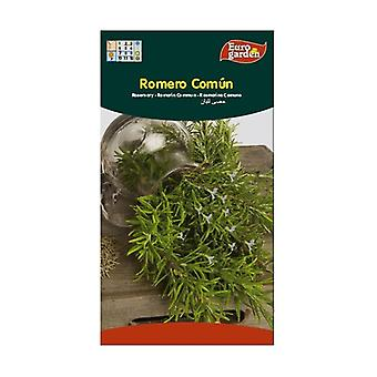 Common Rosemary Seeds 0,2 g