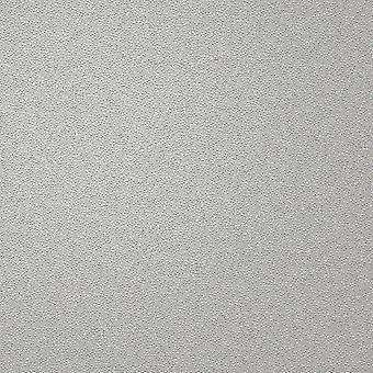 Holden Decor Opus Alocasia Allora Texture Gris Fond d'écran 36031