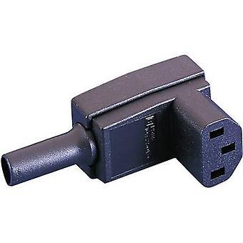 Bulgin PX0588 IEC-liitin PX-liitin, oikea kulma Nastojen kokonaismäärä: 2 + PE 10 A Musta 1 kpl