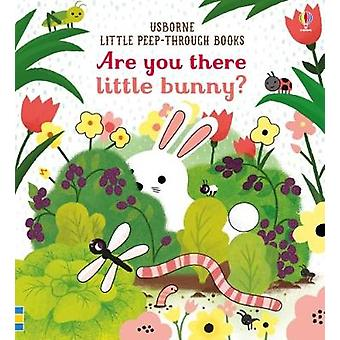 Are you there Little Bunny? by Sam Taplin - 9781474945547 Book