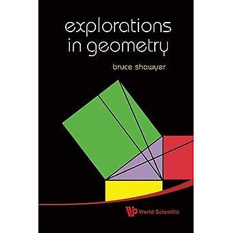 Poszukiwań w geometrii