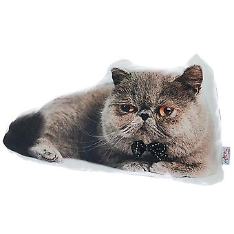 Filled Pillow with Exotic Shorthair Cat Shape, Animal Shaped Pillow