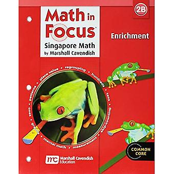 Matematik i fokus: Singapore math: berigelse, bog B Grade 2 (matematik i fokus)