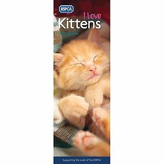 Otter House 2021 Slim Calendar -rspca I Love Kittens
