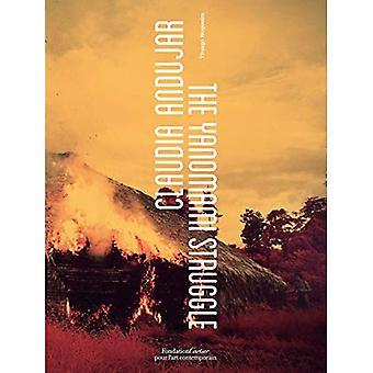 Claudia Andujar, De Strijd van Yanomami