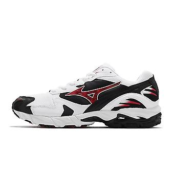 Mizuno Wave Rider 10 Special Pack D1GA210201 universal all year men shoes