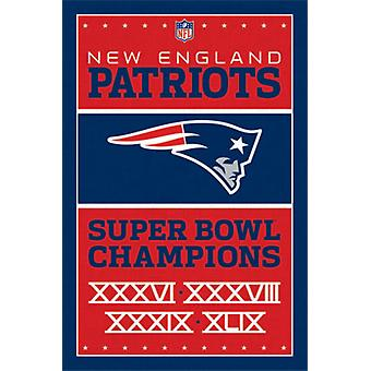New England Patriots - Champions 15 Poster Poster Print