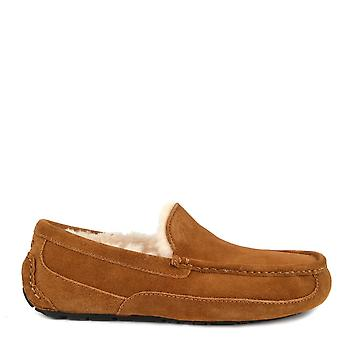 UGG Mens' Ascot Chestnut Suede Slipper