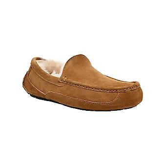 Ugg Australia Mens Ascot Suede Closed Toe Slip On Slippers