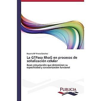 La GTPasa RhoG nl procesos de sealizacin celular door Prieto Snchez Rosario Mara