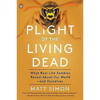 Plight Of The Living Dead - What Real-Life Zombies Reveal About Our Wo