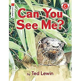 Can You See Me? (I Like to Read)