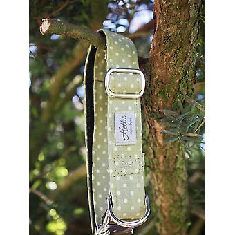 Hundehalsband - grüner Fleck