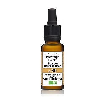 ORGANIC white chestnut 20 ml of floral elixir