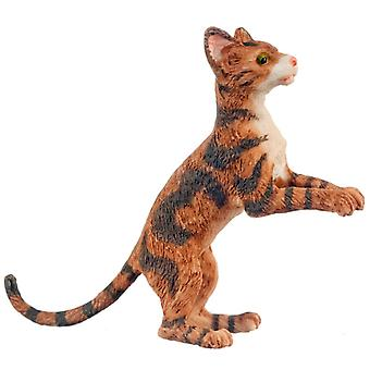 Dolls House Brown Cat Rising Up After Something 1 :12 Schaal Miniatuur Huisdier
