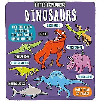 Little Explorers: Dinosaurier (Little Explorers)