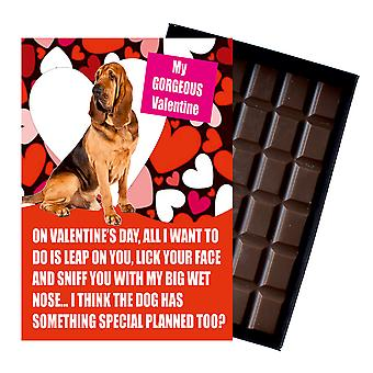 Bloodhound Gift for Valentines Day Presents For Dog Lovers Boxed Chocolate
