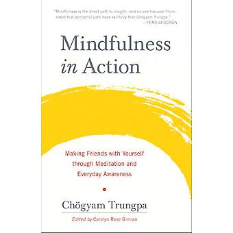 Mindfulness in Action 9781611803532
