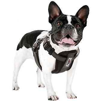 Xt-Dog Arnes Xtdog (Cães , Coleiras, trelas e arneses , Arneses)