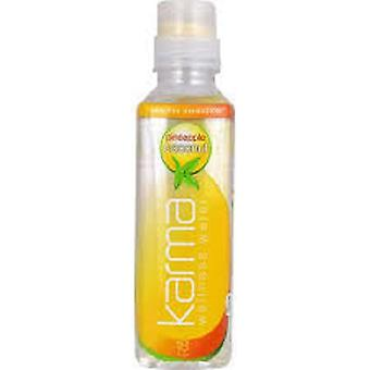 Karma Water Pineapple Coconut-( 532 Ml X 12 Bouteilles )