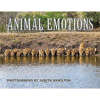 Animal Emotions by Judith Hamilton - 9781734226003 Book
