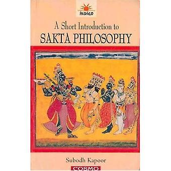 Uma breve introdução à filosofia sakta