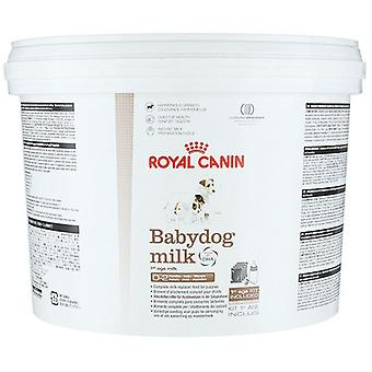 Royal Canin Baby Hund Milchpulver, 2kg