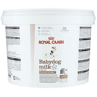 Βασιλικό Canin παιδικό σκυλάκι γάλακτος σε σκόνη, 2Kg