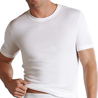 Jockey Luxury Cotton T-SHIRT Frackschnitt 22001812