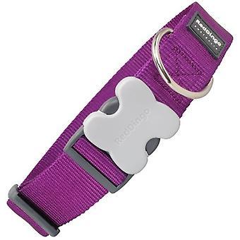 Dingo rouge collier chien violet classique (chiens, colliers, câbles et harnais, colliers)