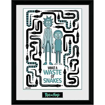 Rick And Morty Waste of Snakes Framed Picture