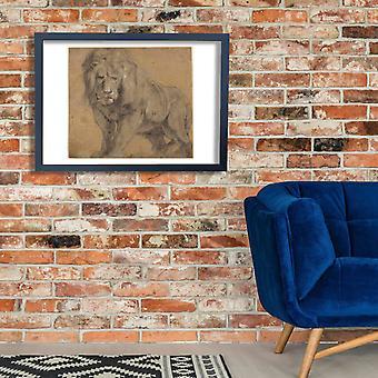 Peter Paul Rubens - Lion Poster Print Giclee