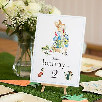 Peter Rabbit 'Some Bunny is 2' Card and Easel 2nd Birthday Decoration Sign