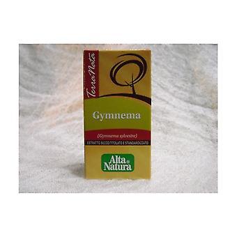 ジムネンマ テラナタ 60錠 500mg