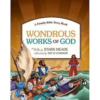 Des oeuvres merveilleuses de Dieu: un livre d'histoire de Bible de famille