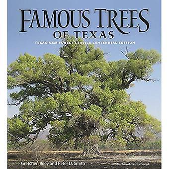 Berömda träden i Texas