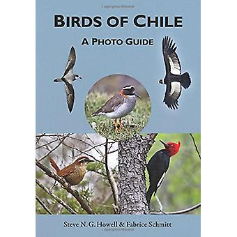 Birds of Chile - A Photo Guide by Steve N. G. Howell - 9780691167398 B