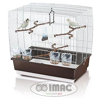Irene Trixder 4, Vogelhok (linnut, lintu häkeissä & lintuhäkit)