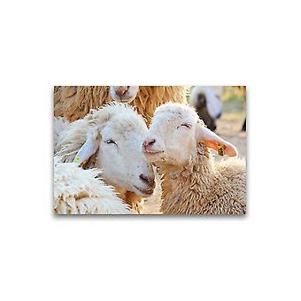 Happy White Sheep Poster -Afbeelding door Shutterstock