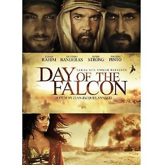 Day of the Falcon [DVD] USA import
