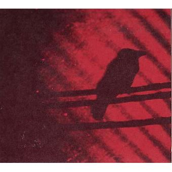 Silver Mt. Zion - Born Into Trouble as the Spark [Vinyl] USA import