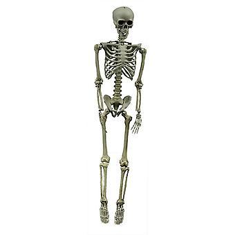 Hooked Skeleton