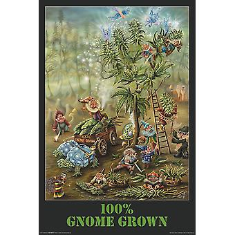 Poster - Michael DuBois - Gnome Grown Wall Art Licensed Gifts Toys 24517